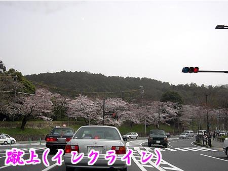 image/gion7638-2007-04-02T22:50:17-5.data
